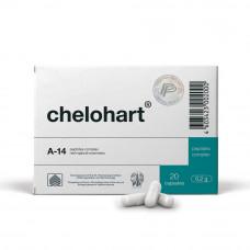 Челохарт N20 — сердце